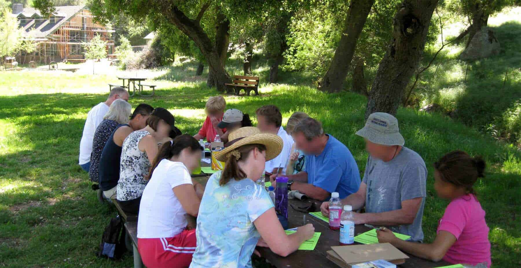 16 people take part in a brainstorming session at a picnic table in a grassy field under large oak trees.